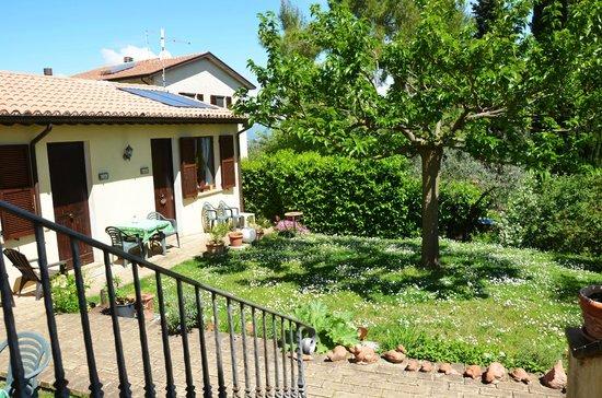 Nonna Rana Holidays Apartments: Giardino