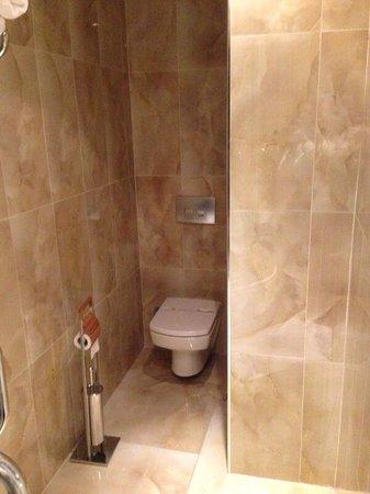 Trend Istanbul Bosphorus: Superior Suite Toilett