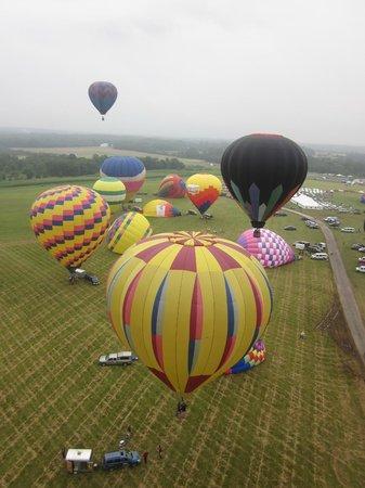 Havasu Ballooning: Ascent