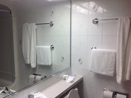 Rodeway Inn Fallsview: salle de bain