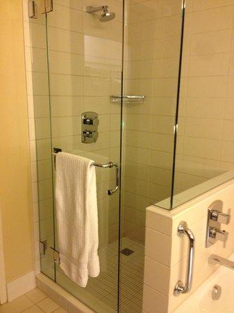 Fairmont Pittsburgh : Shower
