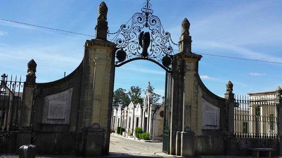 Cemiterio Da Conchada