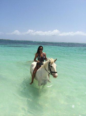 Seaside Nature Park : St Martin 2014