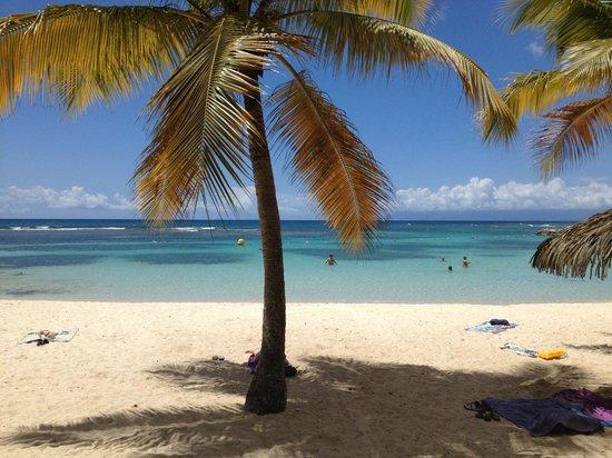 Domaine du Lagon : Plage de l'Anse du Rocher