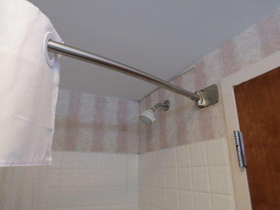 Baymont Inn & Suites Lexington: Peeling Wallpaper