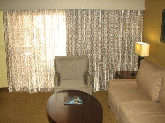 Scottsdale Villa Mirage : Living Room