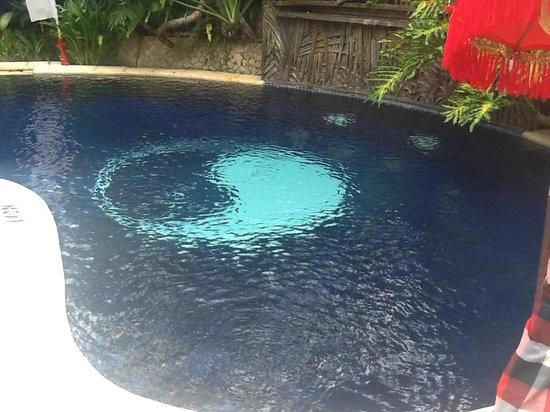 The Villas Bali Hotel & Spa : Our private pool