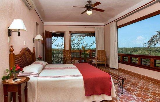 Hotel Hacienda Uxmal Plantation & Museum: Superior field view room