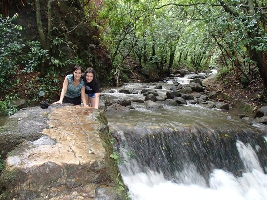 Maunawili Falls : the first creek crossing--we did manage this one