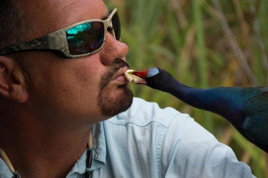 Everglades Holiday Park : Captain Kurt