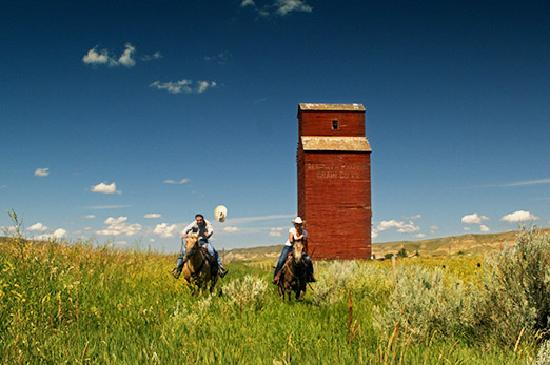 Horseback Riding near the town of Dorothy in Central Alberta