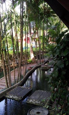 Kata Palm Resort & Spa : vu de notre chambre !