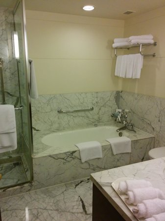 ITC Windsor, Bengaluru: Washroom with Tub and Shower Cube