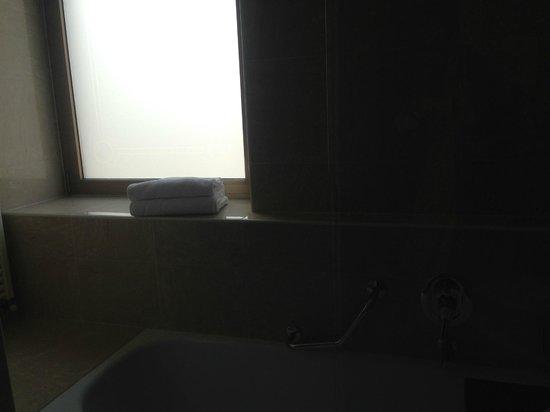 Best Western Hotel Madison : bathroom