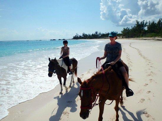Oceanview Farm: Horse back riding on Eleuthera