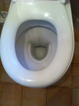 Hotel de La Cote Fleurie : Toilettes sales