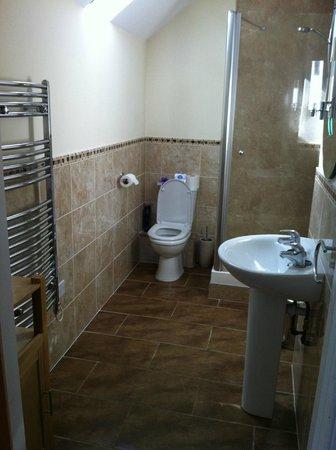Dalnoid Holiday Cottages: Ensuite bathroom - best shower ever!
