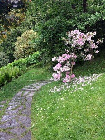 i Giardini di Villa Melzi: Fiori