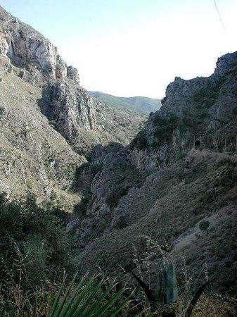 topolia gorge - Εικόνα του Φαράγγι Τοπολίων, Χανιά ...