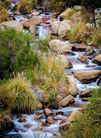Turismo Migrantes : El rio que baja por el valle de Cochiguaz