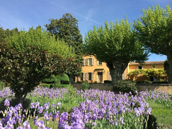 Le Pavillon de Galon: The garden in full bloom!