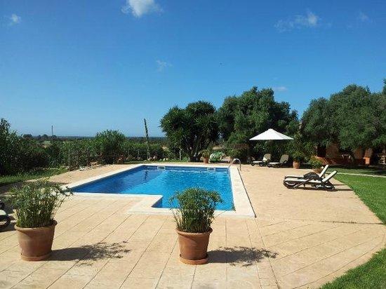 Agroturismo Finca Son Sala: Pool