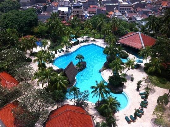 Grand Hyatt Jakarta: pool view room