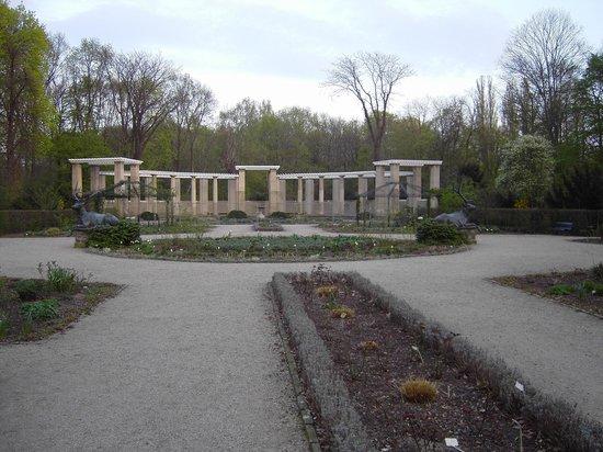 Tiergarten: Rosengarten