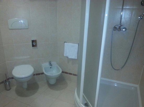 SHG Grand Hotel Milano Malpensa: La première salle de bain de la chambre
