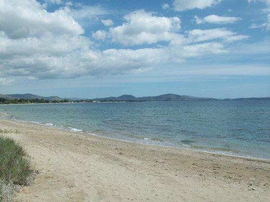 Golden Coast Hotel & Bungalows: Vue de la mer Egée