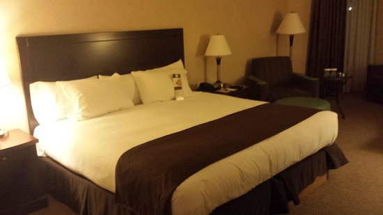 Doubletree Houston Intercontinental Airport: King Bed so comfy