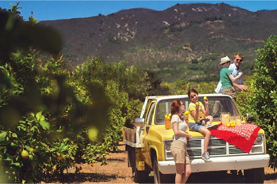 Santa Barbara, CA: There's a treasure trove of activities waiting for you and your family