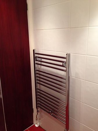 Dene Hotel : Shower room