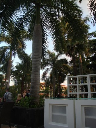 Grand Bahia Principe Coba: Bar/Outside lounge off the Coba main lobby (our favourite hang out spot for the evenings)