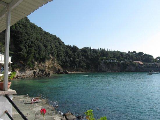 Ciccillo a Mare: Ristorante nella media  & location 5 stelle