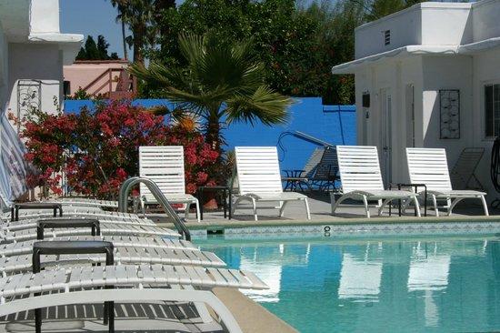 POSH Palm Springs Inn: Poolside