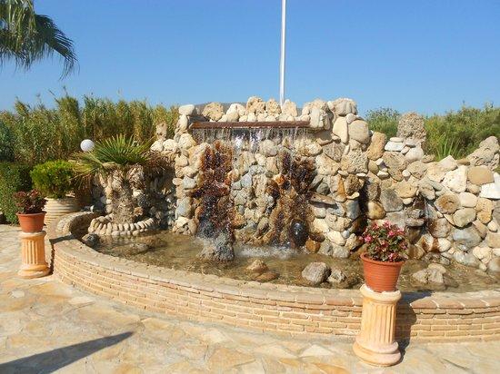 Paradise Apartments & Studios: beaut water feature
