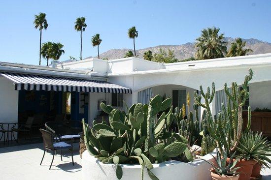 POSH Palm Springs Inn: Looking west