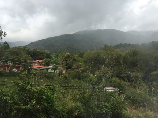 La Casa de la Abuela : View of the cloud forest from our room