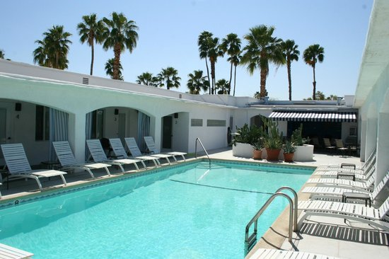 POSH Palm Springs Inn : Palm Trees to the south and east