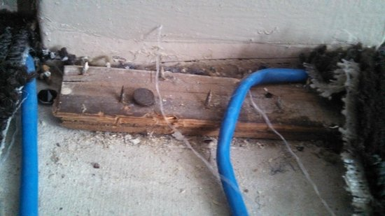The Capitol Hotel Downtown Nashville: Exposed wiring and tac strip nails!