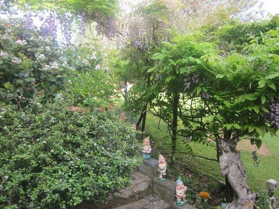 Accanto a pinocchio B&B : il giardino