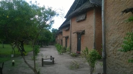 Kipepeo Beach Village : Huts