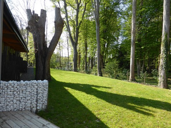 Le Parc du Chateau: Terrasse et bois