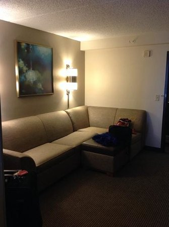 Hyatt Place Orlando Universal : pull out sofa