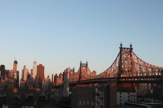 Z NYC Hotel : alba