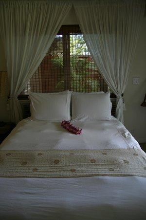The Palmwood : room