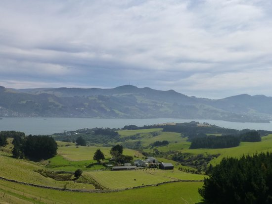 Larnach Castle Lodge: view from room