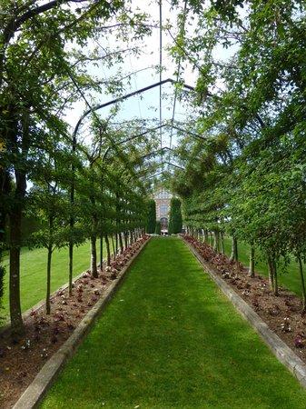 Larnach Castle Lodge: Castle grounds