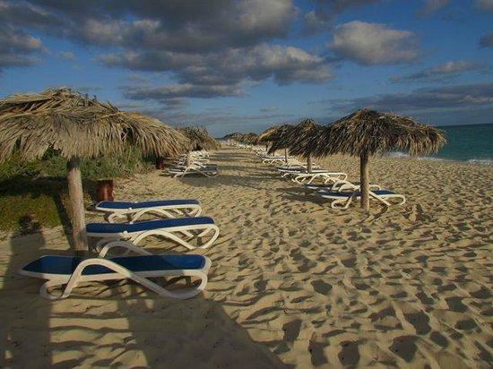 Melia Cayo Santa Maria: Sunrise on the beach
